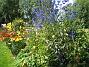 IMG_0098  2011-07-16 IMG_0098