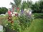 Granudden  2011-07-17 IMG_0183