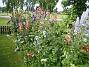 Granudden  2011-07-17 IMG_0232