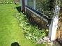 När tulpanerna blommat över, så blir det bara en massa gröna blad kvar. (2012-05-01 018)