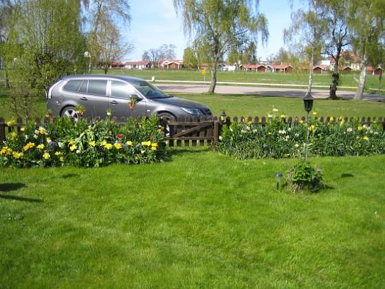 Staketet Det är inte utan viss stolthet man tittar ut över staketet.&nbsp 2012-05-06 024 Granudden Färjestaden Öland