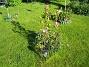 IMG_0016  2012-05-27 IMG_0016