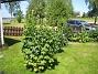 Granudden  2012-06-19 IMG_0011