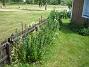 IMG_0026  2012-06-19 IMG_0026