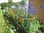 IMG_0017  2012-07-07 IMG_0017