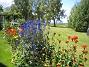 IMG_0054  2012-07-15 IMG_0054