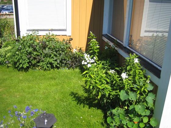 Granudden &nbsp 2012-07-26 IMG_0022 Granudden Färjestaden Öland