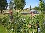 IMG_0090  2012-07-26 IMG_0090