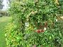 IMG_0034  2012-09-16 IMG_0034