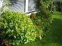 IMG_0012  2012-09-29 IMG_0012