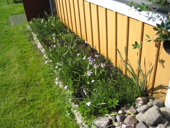 Altanen &nbsp 2013-05-18 IMG_0014 Granudden Färjestaden Öland