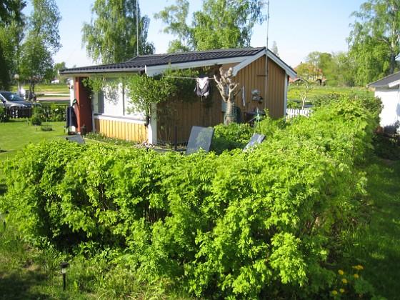 Uteplatsen &nbsp 2013-05-18 IMG_0030 Granudden Färjestaden Öland