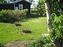 Hortensia  2013-05-18 IMG_0033