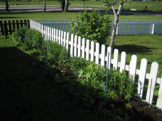 Bakgården Jag har slitit en hel del med bakgården och lagt på jord. Denna plantering blev inte så bra förra året och jag behöver nog komplettera lite. 2015-05-15 IMG_0048 Granudden Färjestaden Öland