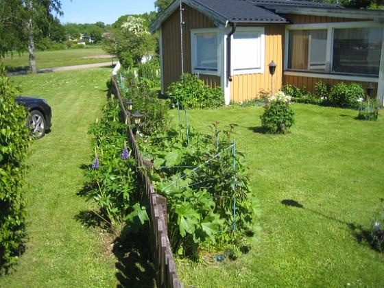 Granudden Här ser vi staketet 2015-06-05 IMG_0065 Granudden Färjestaden Öland