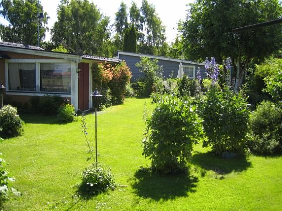 Granudden ... där allting är grönt och fint. 2015-06-26 IMG_0005 Granudden Färjestaden Öland