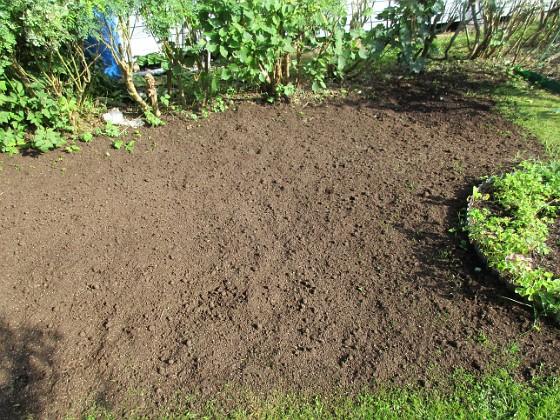 Som sagt, här är sått gräs så vi får hoppas att det blir grönt och fint istället för de två krusbärsbuskar som fanns här innan. 2017-08-08 IMG_0027 Granudden Färjestaden Öland