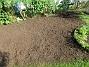 Som sagt, här är sått gräs så vi får hoppas att det blir grönt och fint istället för de två krusbärsbuskar som fanns här innan. (2017-08-08 IMG_0027)