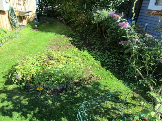 Granudden Här sådde jag gräs för två veckor sedan. Jo det har kommit gräs men mest ogräs!&nbsp 2017-08-20 Granudden_0044 Granudden Färjestaden Öland