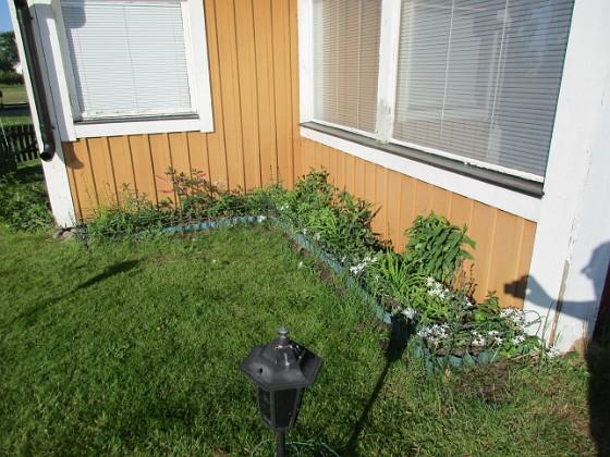 Vinkeln Inte mycket blommor ännu. Men här blir det Praktlysing, Salvia, Daglilja mm.                                2018-05-25 Vinkeln_0002 Granudden Färjestaden Öland