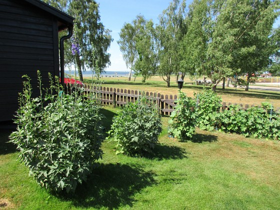 Granudden                                 2018-06-14 Granudden_0021 Granudden Färjestaden Öland