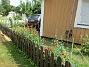 Studentnejlika Vackra röda blommor skådas från utsidan av staketet! 2018-06-19 Studentnejlika_0005