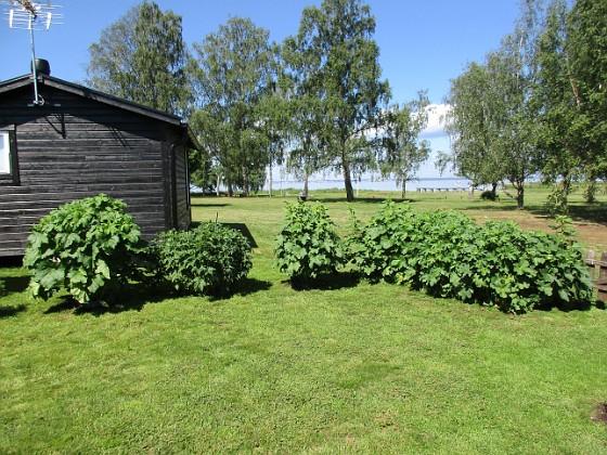 Granudden                                 2019-06-14 Granudden_0005 Granudden Färjestaden Öland
