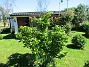 Magnoia (2019-06-14 Magnoia_0051)