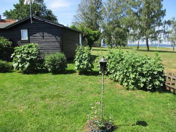 Granudden                                &nbsp 2019-06-18 Granudden_0100 Granudden Färjestaden Öland