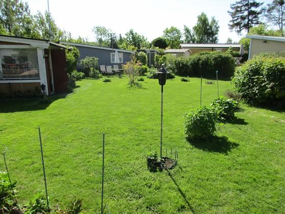 Granudden Äntligen har jag lyckats med min gräsmatta! 2020-05-27 Granudden_0020 Granudden Färjestaden Öland