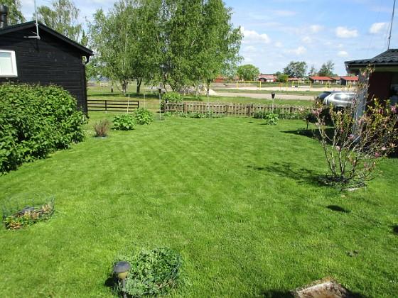 Granudden Nu är jag äntligen nöjd med min gräsmatta. 2020-05-27 Granudden_0052 Granudden Färjestaden Öland