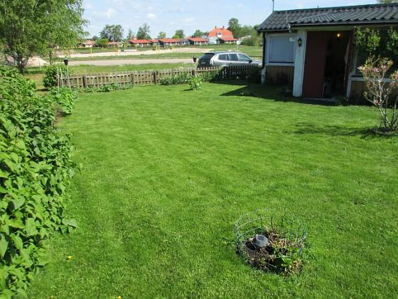 Granudden Nu är jag äntligen nöjd med min gräsmatta.                                2020-05-27 Granudden_0055 Granudden Färjestaden Öland