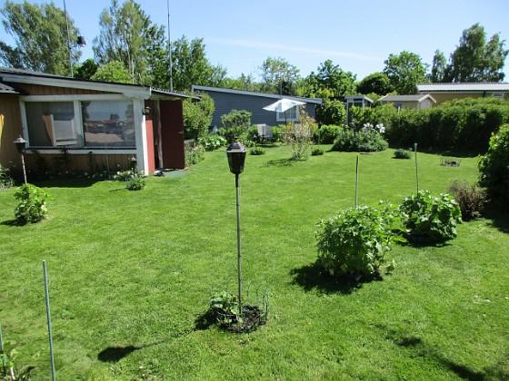 Granudden Gräset klippte jag igår. 2020-06-01 Granudden_0002 Granudden Färjestaden Öland