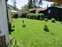 Gräset är grönt och fint och jag klippte igår. (2020-06-01 Gräsmattan_0007)