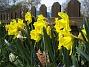 (2008 2008-04-26 Bild 027)