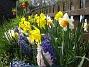 (2008 2008-04-26 Bild 056)