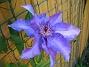 (2008 2008-06-07 Bild 063)